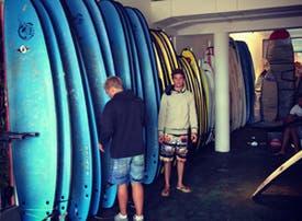 Biología escuela de surf - 20%