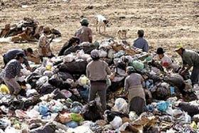 Muchas familias viven de los desechos de un basural en San Pedro