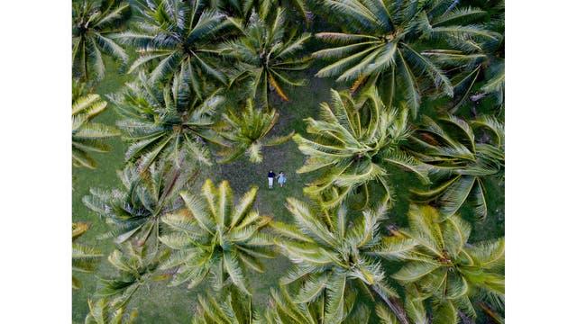 Boda en Huahine, Polinesia Francesa