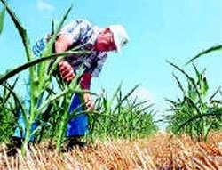 Los farmers no ocultaban su preocupación