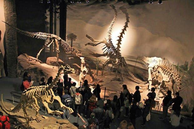 El público observa algunas de las piezas descubiertas por científicos del MEF