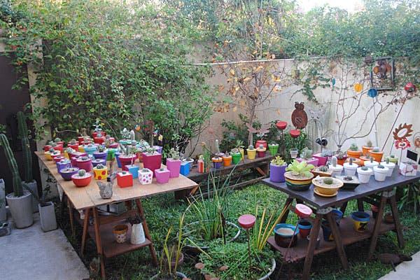 El jardín de la casa, lleno de macetas con cactus y suculentas. Foto: Cecilia Wall