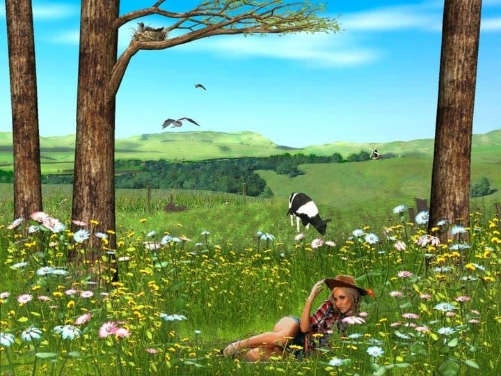 Spring Valle_ber_girls, Petra Cortright, animación, 2012