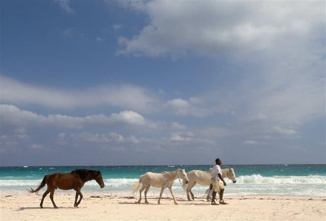 En Harbour Island, Bahamas, las arenas son rosadas