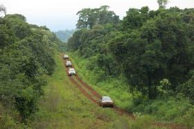 Onda verde: trece camionetas y una experiencia muy natural