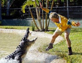 Irwin, junto a sus reptiles preferidos, en un pasaje de su programa