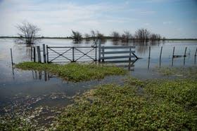 Los excesos hídricos afectarán a la nueva campaña