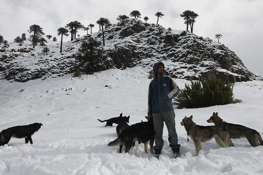 Imposibilitado de trasladarlos decidió quedarse para cuidar de ellos. Foto: LA NACION / Alfredo Sánchez