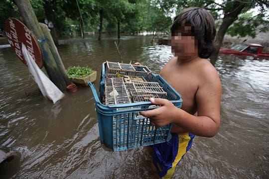 Muertos y miles de evacuados por la crecida del río Areco. Foto: LA NACION / Aníbal Greco