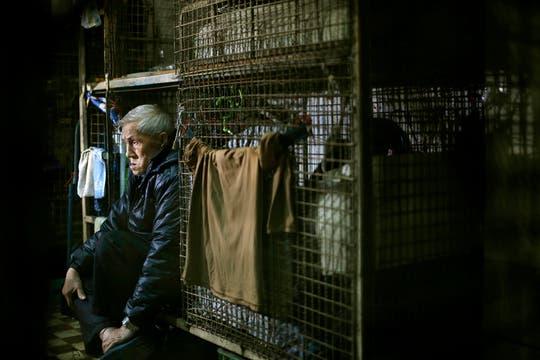 """Para los más pobres, como Leung Cho-yin, """"hogar"""" es una jaula de metal de 1,5 m metros cuadrados. Foto: AP"""