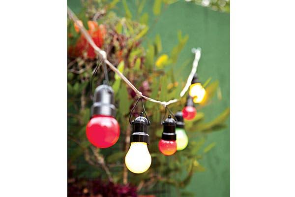 En un ficus colocamos guirnaldas de luces con bolas tipo chinas de diferentes colores (Somos Luz). Foto: Magalí Saberián. Producción de Ana Inés Gil