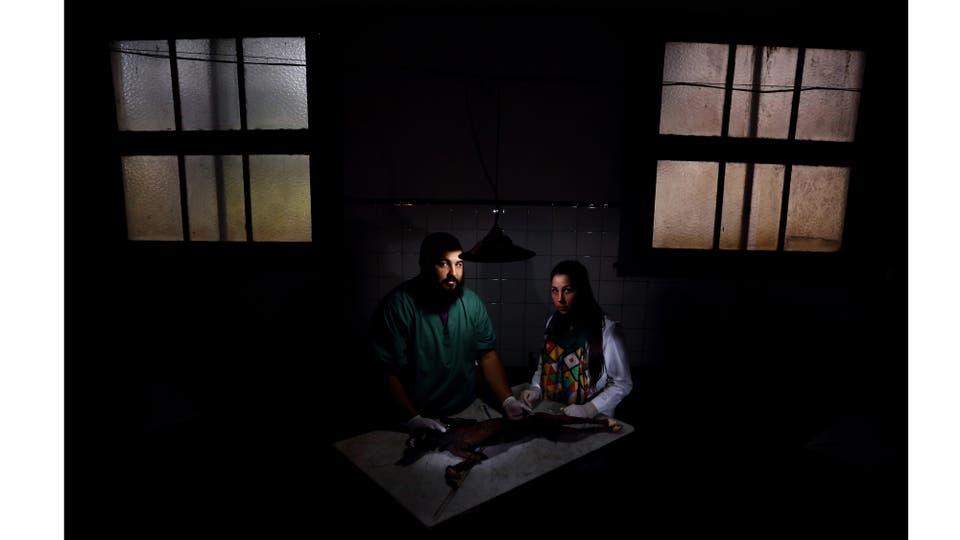 Carlos, ayudante-alumno de Anatomía de la Facultad de Veterinaria, y Josefina, estudiante de primer año, trabajan sobre un cuerpo disecado en la ciudad de La Plata, Pcia. de Buenos Aires, julio 2015. Foto: Adhemar Matías