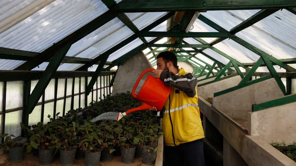 Varias personas trabajan en el cuidado de las plantas. Foto: LA NACION / Silvana Colombo