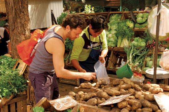 Martín Churba elige los vegetales de un guiso agrio que cocinará para amigos, con arroz doble carolina. Foto: Alina Schwarcz