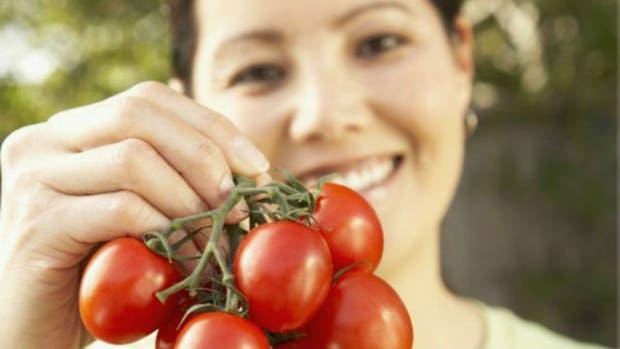 Uno de los cultivos más comunes en los huertos domésticos es el tomate, un alimento rico y saludable, que podrás plantar en tu casa sin gran dificultad