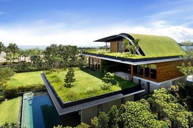 Techo verde, una opción ecológica para la casa