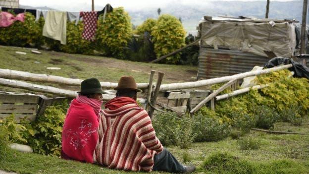 A nivel local se promovió la participación en el estudio con una campaña de marketing llamada Lulun Project, que hace referencia a la palabra quechua para huevo