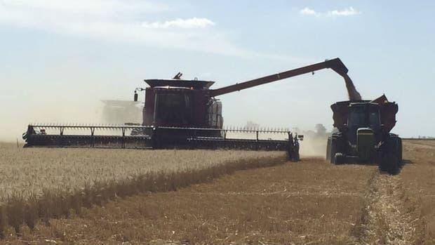 Todas las actividades del agro consumen 4300 millones de litros de gasoil por año