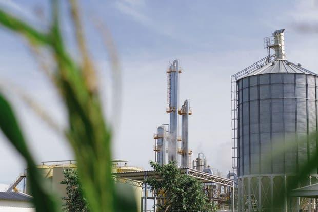 Preocupación por la baja del precio dispuesta por Energía