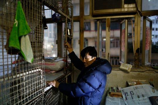 Cheng Man Wai de 62 años, es vecino de Leung Cho-yin, dicen que no usan colchones para que haya menos pulgas. Foto: AP