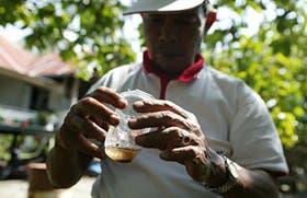 El agua estancada es propicia para la reproducción del mosquito transmisor. (OMS) Organización Mundial de la Salud