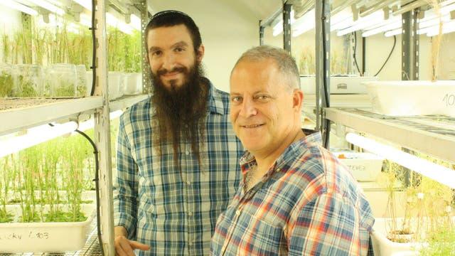 El doctor Marcelo Yanovsky, jefe del laboratorio de Genómica Vegetal del Instituto Leloir (der.) y uno de los integrantes de su grupo, el doctor Rubén Gustavo Schlaen, primer autor del estudio