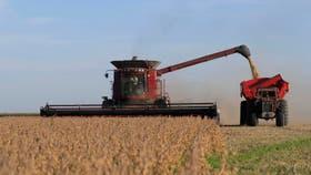 La cosecha de soja avanzó la mitad del promedio en 5 años