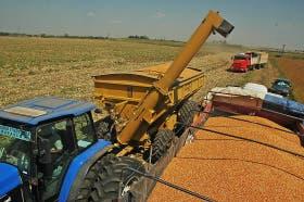 Bajas para el cereal por las mayores existencias informadas por el USDA