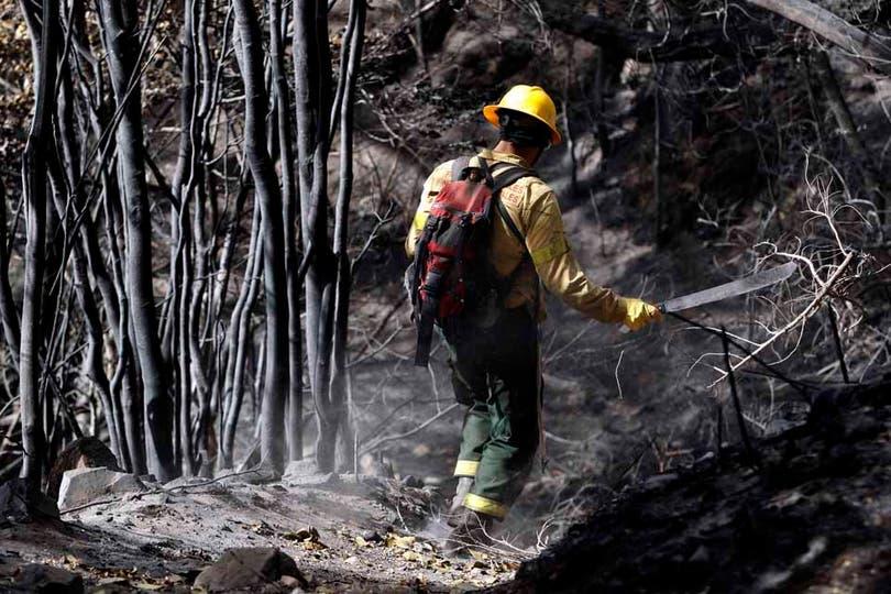El paisaje que quedó tras el fuego es desolador. Foto: LA NACION / Emiliano Lasalvia