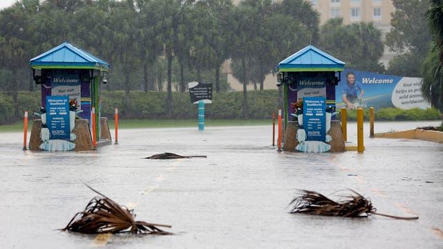 Huracán Irma: Disney abrió sus puertas tras varios días cerrado por la furia de la tormenta