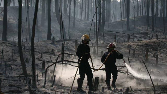 Los bomberos trabajaron durante varias horas para sofocar el fuego que cambiaba constantemente de dirección por culpa de los vientos. Foto: LA NACION / Mauro V. Rizzi //Enviado especial