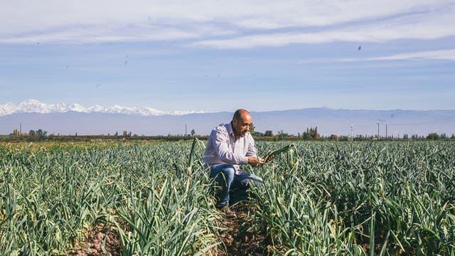 Germán Horn, ingeniero agrónomo, a cargo del área de abastecimiento de Knorr