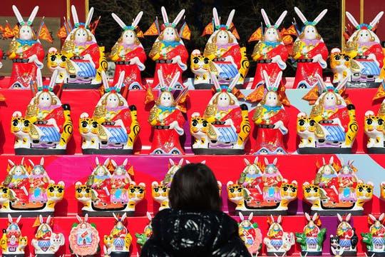 Una mujer mira un vidriera llena de conejos en Beijing. Foto: AFP
