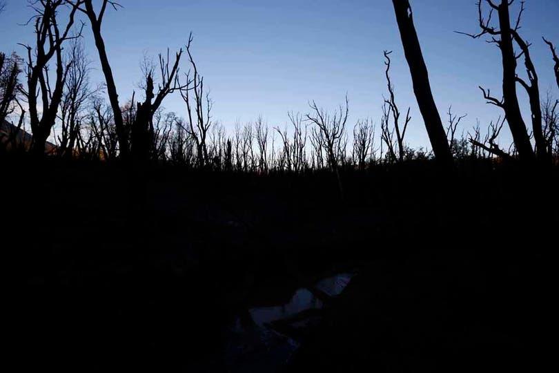 Márgenes del lago Cholila. Foto: LA NACION / Emiliano Lasalvia