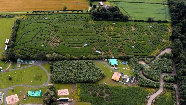 El laberinto creado por Pearcy ocupa seis hectáreas