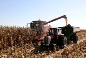 Un informe destaca que el cereal emite un tercio de lo que se estimaba