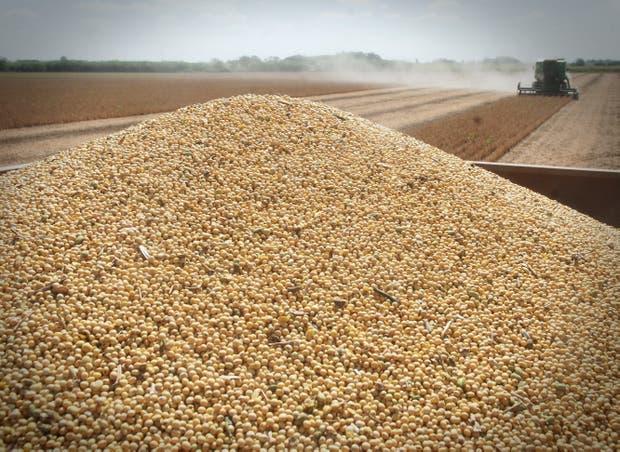 En valor, la liquidación de divisas del agro viene 9,6% por debajo del año pasado