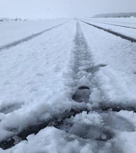 Así está la pista del aeropuerto de Chapelco