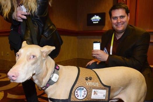 TAGG Pet Tracker, el dispositivo que permite monitorear la ubicación de una mascota. Foto: EFE