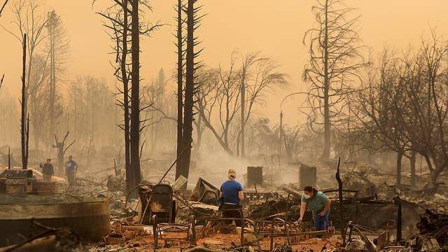 Los vientos de unos 80 km por hora fueron un factor fundamental para que las llamas arrasaran con todo a su paso