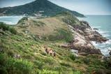 Fotos de Trail Running
