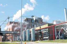 La planta de San Pedro es la principal abastecedora de papel de diarios de la Argentina