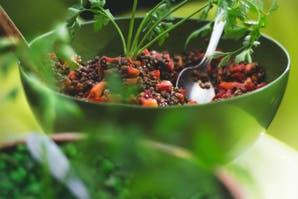 Cómo incluir legumbres en tu dieta