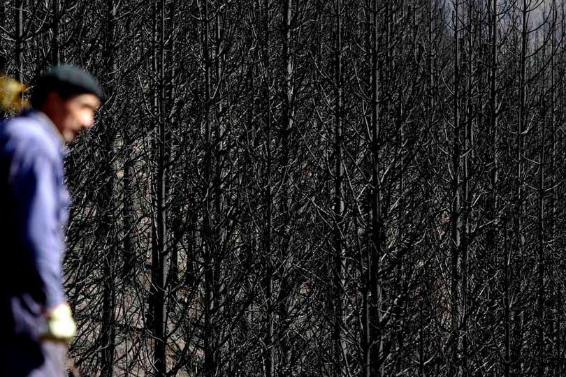 Mario Zuniga, observa el triste panorama de El Desemboque, chubut. Foto: LA NACION / Emiliano Lasalvia