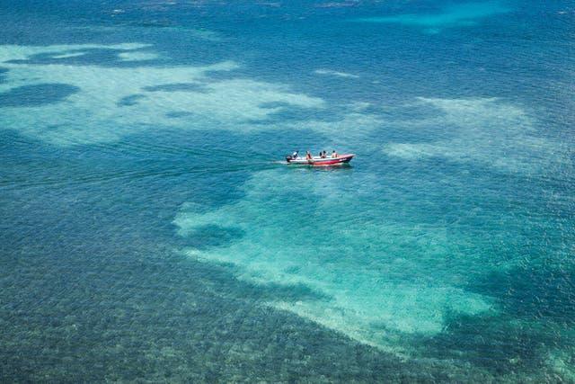 Vista a la bahía de Port Antonio desde el hotel Goblin Hill. Foto: Sofía López Mañán
