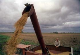 En el mercado de Chicago entienden que las complicaciones para la cosecha no son tan graves