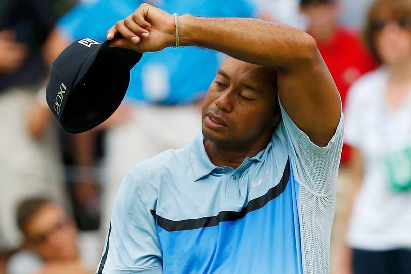 ¿Mucho calor, Tigre?. Foto: AP, AFP, EFE, Reuters