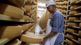 La dieta de los suizos es alta en consumo de quesos y leche.