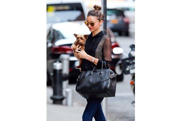 Miranda Kerr de paseo con Frankie, por las calles de Nueva York. Foto: Vía zimbio.com