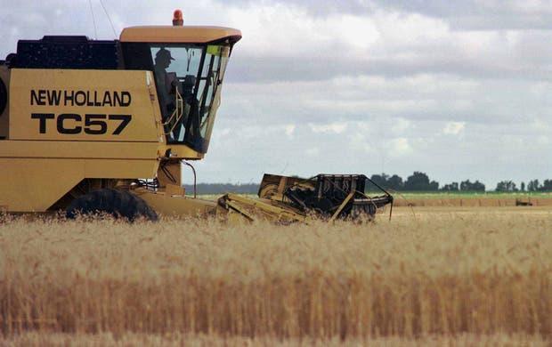El mercado para el trigo, sin sobresaltos